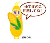 kimihime4